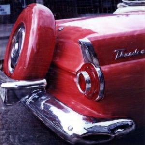 thunderbrid2